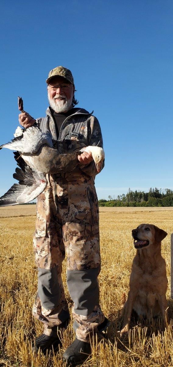 Rockosh Feedback - Snow Geese Hunting Saskatchewan